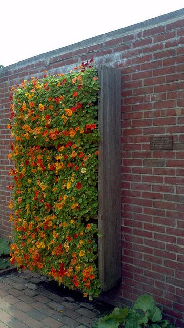 Jardín vertical con flores en tonos amarillos y naranjas.