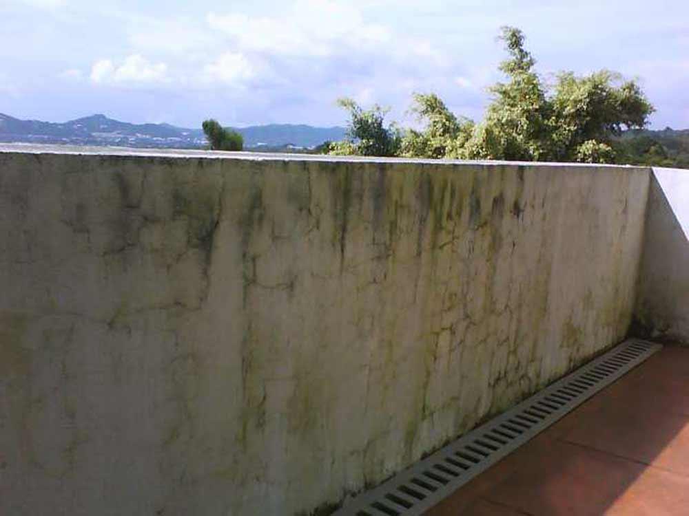 Como quitar mancha de humedad en la pared moho y humedades en una pared exterior se aprecia el - Quitar humedad pared ...