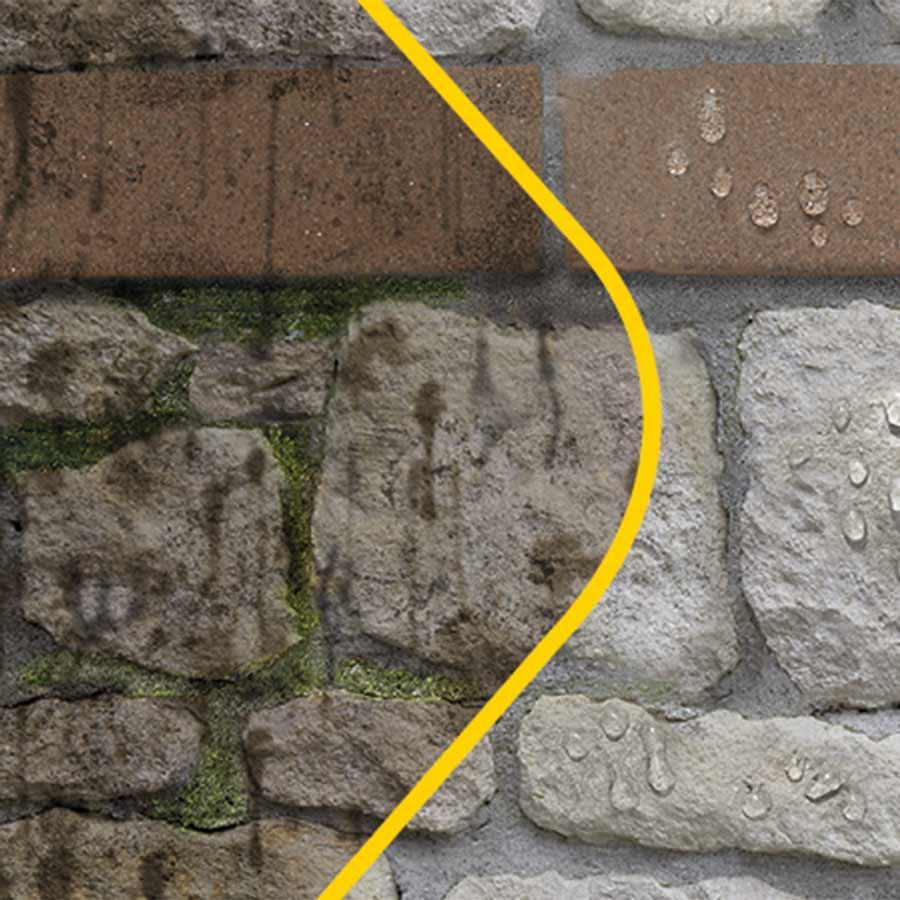 Eliminar y prevenir moho y humedades en el exterior grup - Como quitar moho de la pared ...
