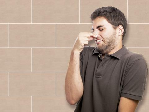C mo eliminar el mal olor del cuarto de ba o grup gamma - Mal olor en el bano ...