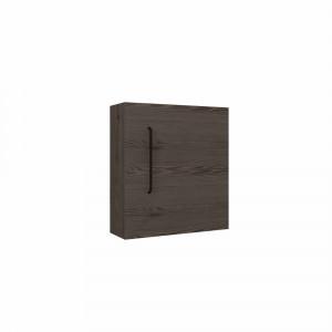 Casco modulo colgar Lucid Tattom 1 puerta 40 cm alerce antracita